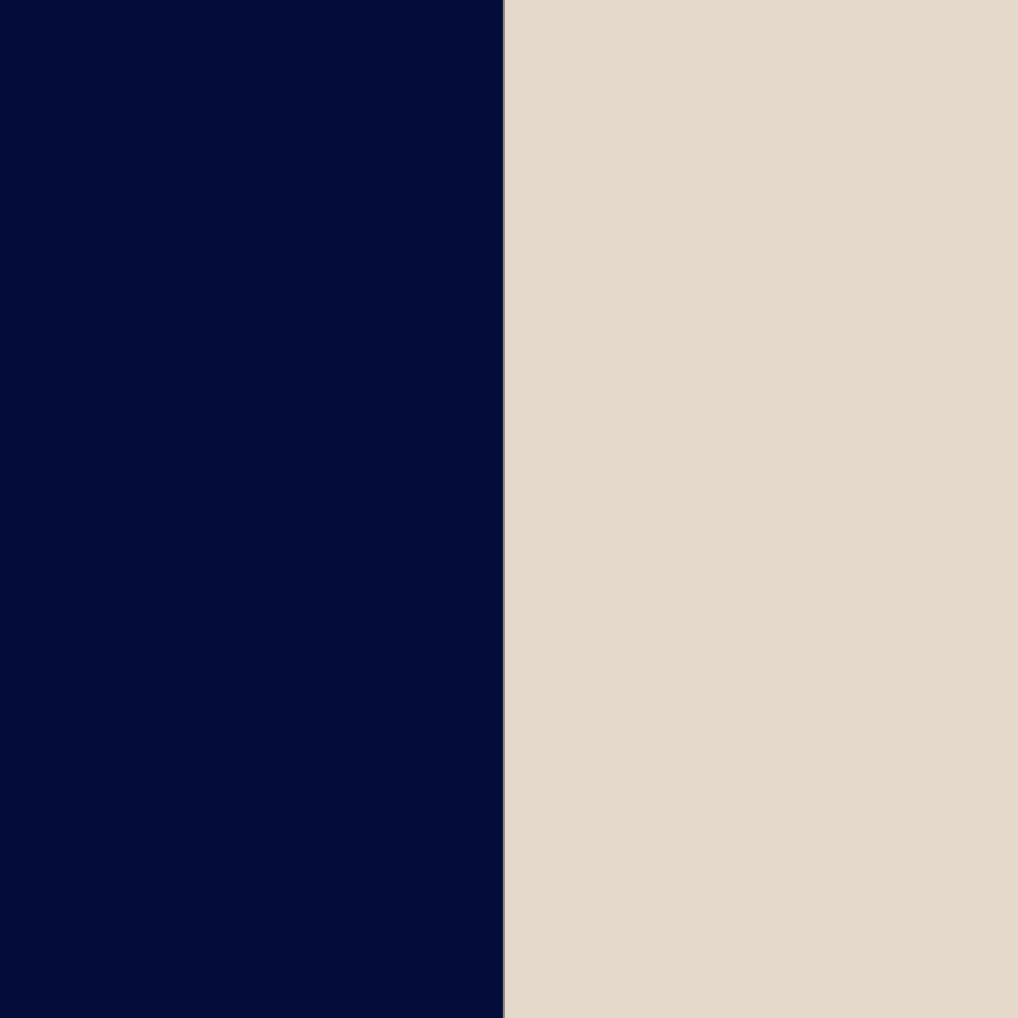 bleumarine + bej 2